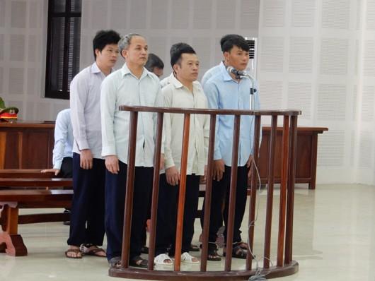 """Đà Nẵng: Phúc thẩm vụ cán bộ kiểm lâm nhận hối lộ, để """"lâm tặc"""" phá rừng"""