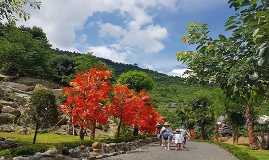 Nhiều hoạt động vui chơi tại Núi Thần Tài nhân kỷ niệm 25 năm thiệt lập quan hệ ngoại giao Việt -  Hàn