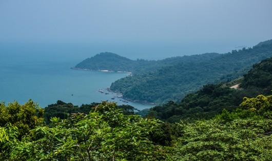 Từ ngày 6/12, sẽ thanh tra toàn bộ dự án trên bán đảo Sơn Trà