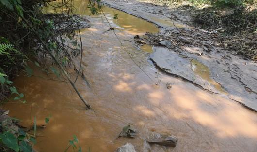 Sông Bồng Miêu đổi màu, bốc mùi những ngày qua