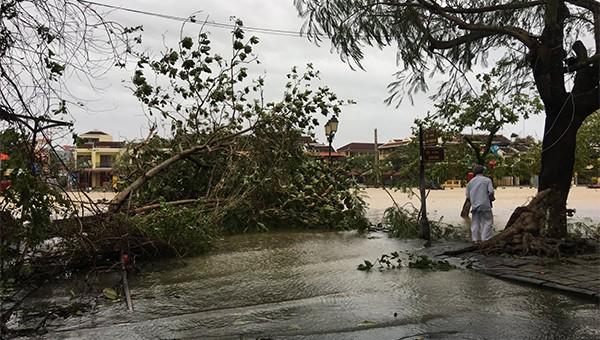 Quảng Nam: Di dời 72.000 người để phòng tránh bão số 13, ngập lụt và sạt lở đất