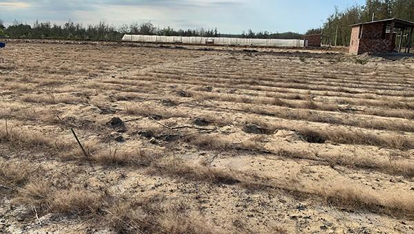 Những dự án đầu tư nông nghiệp triển khai dang dở, bỏ hoang.