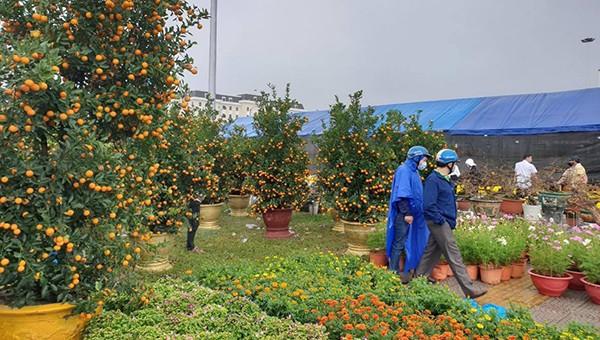Chợ hoa Đà Nẵng ngày giáp Tết.