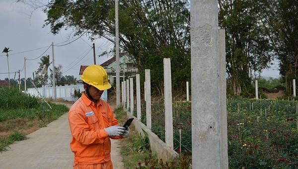 Tập trung nâng cấp, cải tạo lưới điện hạ áp nông thôn tại Quảng Ngãi