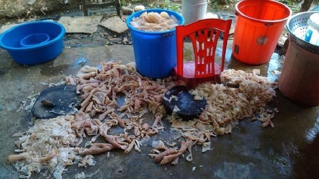 Hình ảnh quy trình chế biến nem chua trên nền đất bẩn ở Thanh Hóa được chia sẻ trên mạng xã hội