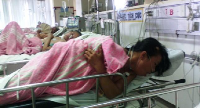 Các bệnh nhân ngộ độc cá nóc đang được điều trị tại Bệnh viện T.Ư Huế