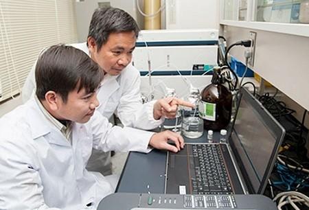 Hợp chất đắt hơn vàng 30 ngàn lần, có tác dụng ức chế tiểu đường được khoa học gia người Việt tìm thấy từ cây lúa