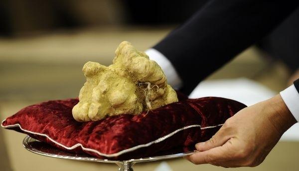 """Những món ăn xa xỉ nhất hành tinh: Loại nấm được ví là """"kim cương đen"""" chỉ giới siêu giàu mới có cơ hội """"nếm"""""""