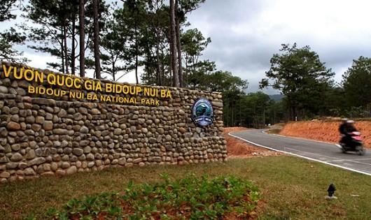 """Yêu cầu """"xử lý dứt"""" nạn lấn đất Vườn Quốc gia Bidoup - Núi Bà"""