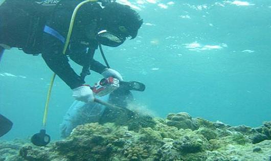 8 trường hợp không được phép nghiên cứu khoa học trong vùng biển Việt Nam