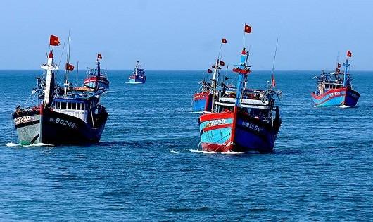 Sự cố môi trường biển -  Biến rủi ro thành cơ hội