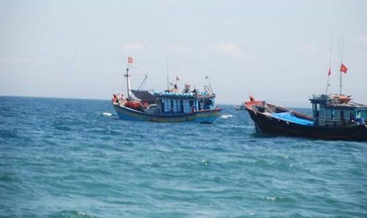 Tập trung đánh giá thiệt hại môi trường biển miền Trung