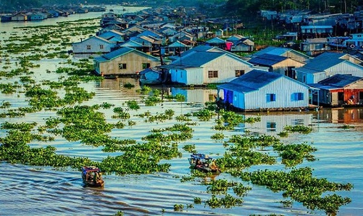 Kỳ thú làng nổi  trên sóng nước Hậu Giang