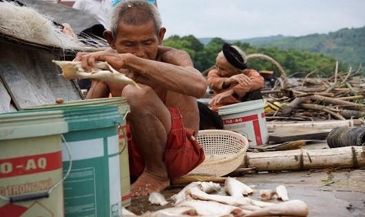 Vợ chồng ông Kính đau đớn vớt lồng cá chết sạch đã được họ ông tâm huyết chăn nuôi.