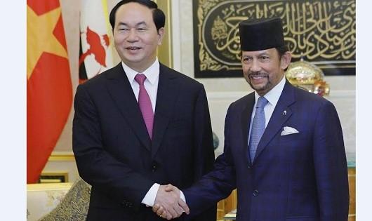 Chủ tịch nước Trần Đại Quang và Quốc vương Brunei tại cuộc hội kiến