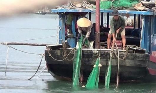 Cận cảnh một thuyền đang đánh bắt hải sản bằng kích điện trên vịnh Hạ Long.