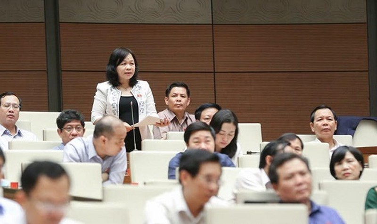 ĐB Nguyễn Thị Mai Hoa (Đồng Tháp) phát biểu tại QH.