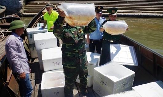 Bắt giữ 3 vụ nhập lậu cá các loại từ Trung Quốc vào Việt Nam