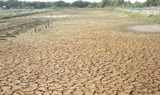 Người nông dân ĐBSCL đang phải đối mặt với những tác động của hiện tượng thời tiết cực đoan từ BĐKH.