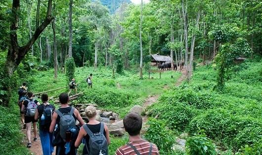 Lo ngại khu du lịch sinh thái đang phát triển kiểu thời vụ