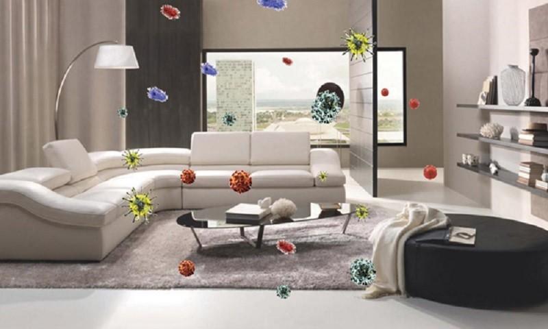 Sofa, thảm, chăn gối, phòng bếp...chính là nơi ẩn nấp của vi khuẩn, nấm mốc gây ô nhiễm không khí trong nhà (Ảnh minh họa)