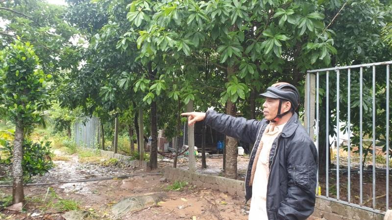 Ông Nguyễn Văn Út (trú tại ấp Suối Lớn, xã Dương Tơ, huyện Phú Quốc, tỉnh Kiên Giang) đang chỉ phần đất mà bà C đã mua
