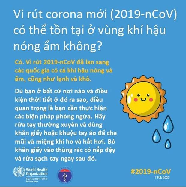 Bộ Y tế và WHO giải đáp thắc nhận bưu phẩm, thư tín có lây nhiễm virus corona hay không - Ảnh 8.
