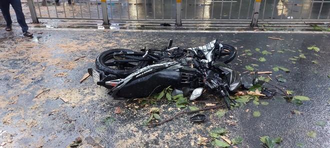 TP.HCM: Cây xanh trước trường ĐH bật gốc đè nát xe máy, nam thanh niên bị thương nặng - Ảnh 2.