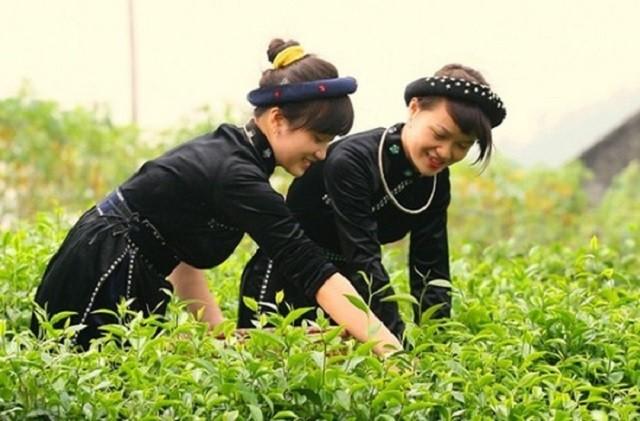 Thụ hưởng chương trình đào tạo kỹ năng số giúp  nhiều phụ nữ tự mình tìm kiếm cơ hội kinh doanh, tạo việc làm (ảnh minh họa)