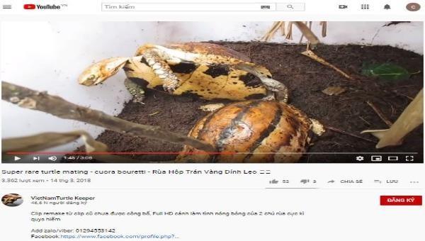 Con trai đối tượng Hoàng Minh Triển thường xuyên đăng tải các video bài viết rao bán rùa trái phép trên mạng xã hội