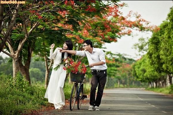 Nhìn phượng hồng nở hoa, bâng khuâng nhớ mối tình học trò