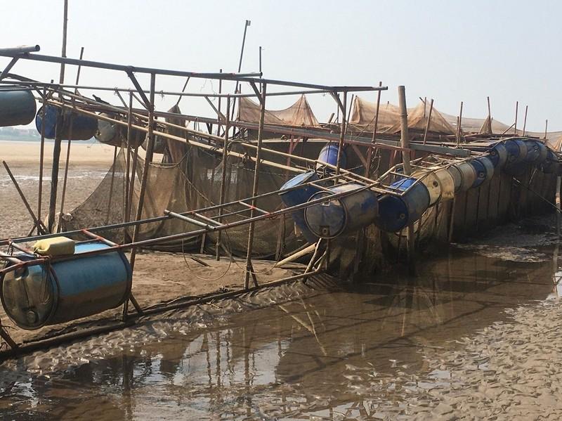 Xót lòng lồng nuôi cá bị trơ đáy trên sông Đà