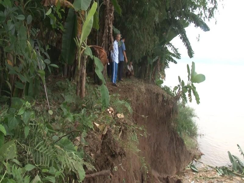 Sạt lở nghiêm trọng bờ vở sông Hồng đoạn chảy qua xã Động Lâm
