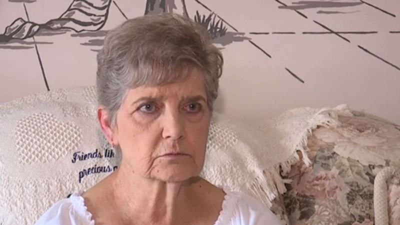 Cụ bà nhận án phạt 10 ngày tù vì muốn chăm sóc mèo hoang