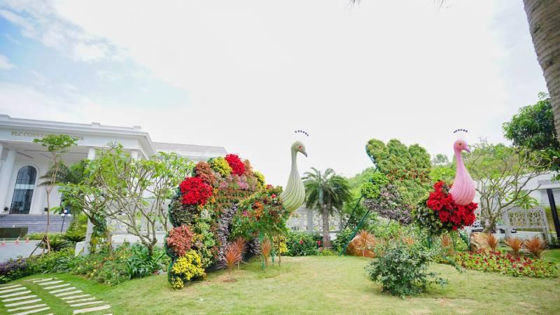 Ngàn hoa khoe sắc trên đồi cao tại Hạ Long - Khung cảnh độc đáo thu hút du khách dịp 30/4