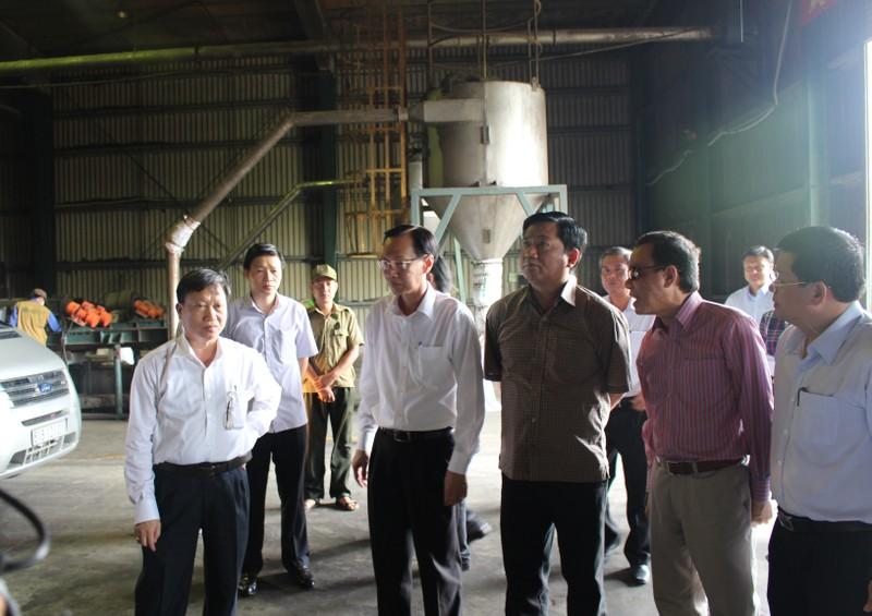 Bí thư Đinh La Thăng thị sát khu xử lý rác mà cử tri phản ánh ô nhiễm