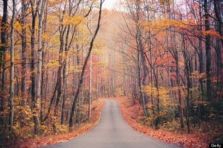 Công viên quốc gia Great Smoky Mountains, bang Tennessee, Mỹ