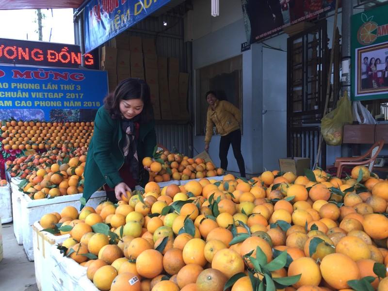Cửa hàng cam Hương Đồng tại thị trấn Cao Phong