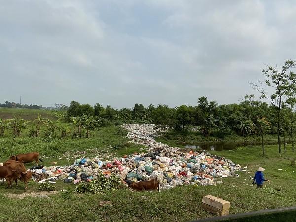 Ô nhiễm rác thải nông thôn tại Nam Định.