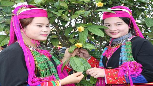 Thiếu nữ tạo dáng bên cây Trà hoa vàng.