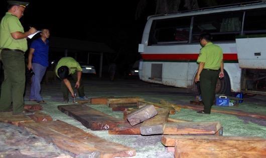 Lực lượng chức năng kiểm đếm sỗ gỗ