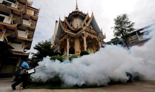 Thái Lan phát hiện thêm 33 trường hợp nhiễm virus Zika