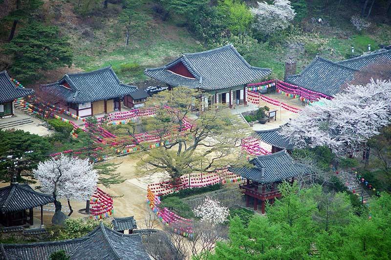 Incheon – Điểm đến của những tâm hồn yêu phong cảnh Hàn Quốc