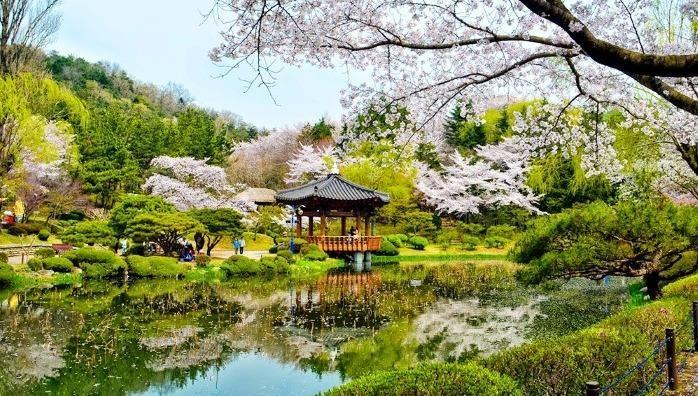 Đối với những ai yêu thiên nhiên, muốn thả mình vào một không gian tươi mát, được ngắm những thảm thực vật phong phú thì công viên Dương Minh Sơn tại Đài Loan là một điểm đến mà bạn không nên bỏ qua.