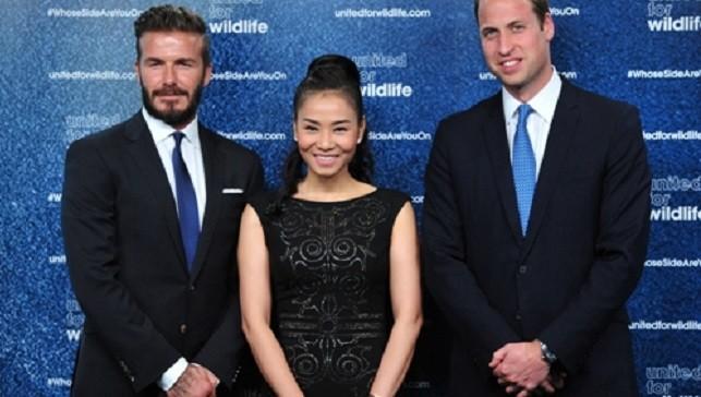 Thu Minh cho biết, cả hoàng tử William và danh thủ David Beckham đều là những chàng trai tinh tế.