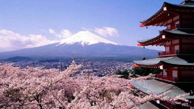 Du lịch Nhật Bản có thú vị không?
