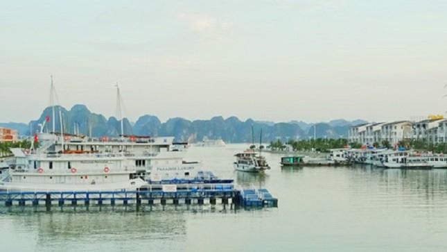 Cảng du thuyền nhân tạo Tuần Châu.