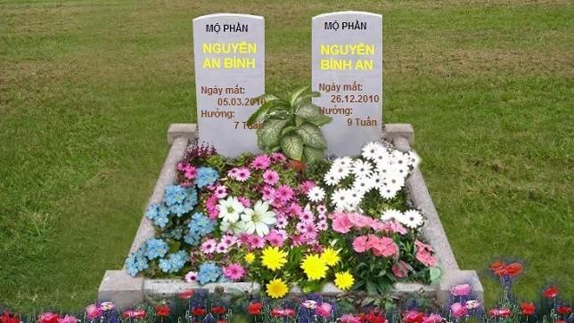 Những ngôi mộ ảo mà một nữ sinh đã lập cho hai đứa con của mình.
