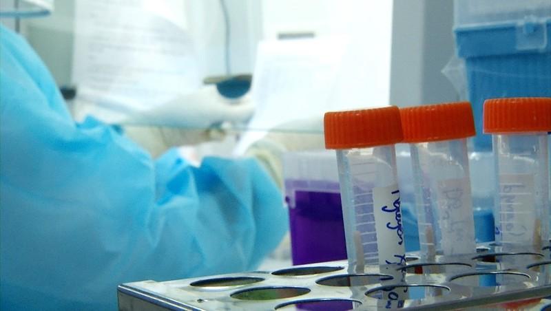 Phát hiện 2 trường hợp nhập cảnh trái phép nghi nhiễm COVID-19 tại An Giang