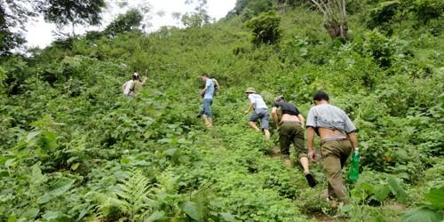 Băng rừng, vượt núi truy bắt nghi đối tượng gây án ở Yên Bái. Ảnh: Sơn Hải.